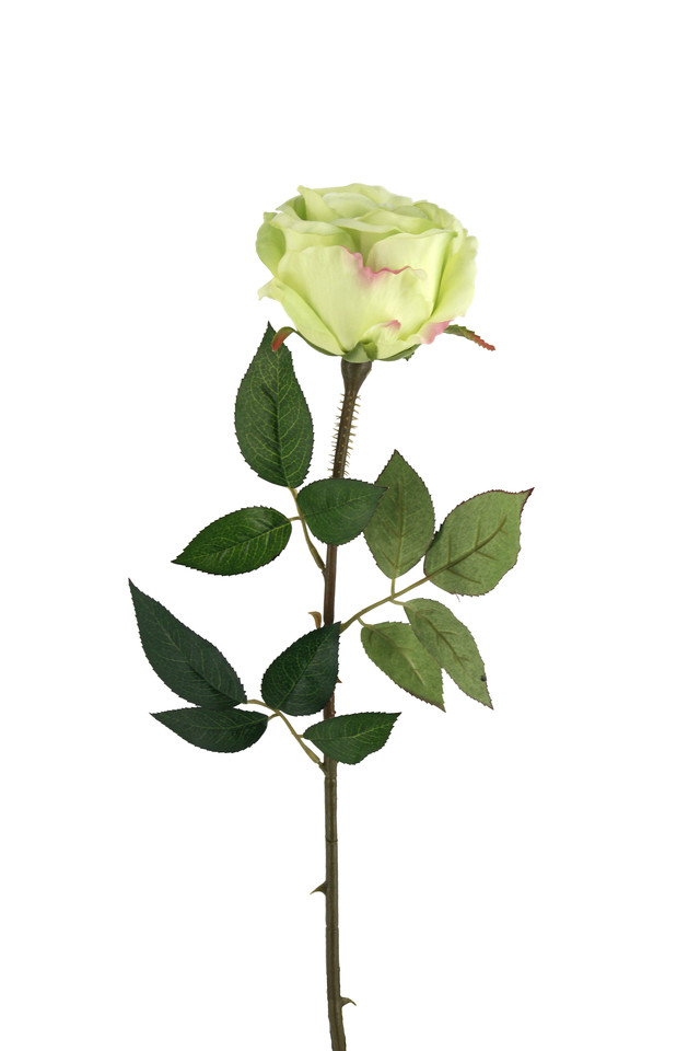 ROSE ROSES ARTIFICIAL ARTIFICIALS FLOWERS FLOWER STEM STEMS SINGLE SINGLES