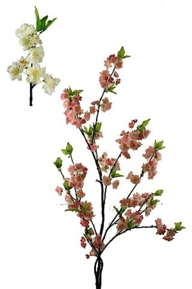 BLOSSOM BLOSSOMS ARTIFICIAL ARTIFICIALS FLOWERS FLOWER BRANCH BRANCHES BRANCHE CHERRY CHERRIES CHERRIE APPLE APPLES PLUM PLUMS SPRAY SPRAYS SPRAIE ARRANGEMENT ARRANGEMENTS STEM STEMS TREE TREES FAKE FAKES