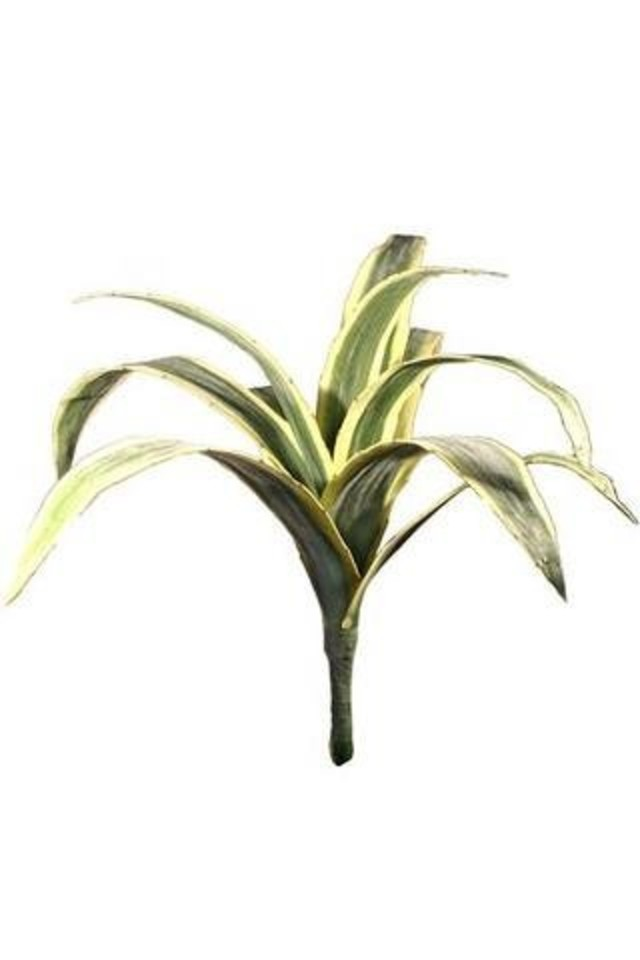 FLAX FLAXES ARTIFICIAL ARTIFICIALS 88CM 88CMS LARGE LARGES AGAVE AGAVES AGAFE LEAVES LEAFE LEAVE LEAF LEAFS