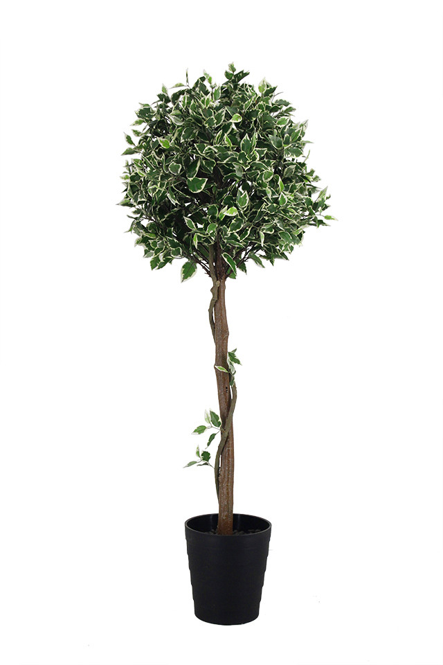 GGREENERY GGREENERIES GGREENERIE ARTIFICIAL ARTIFICIALS FLOWER FLOWERS PLANT PLANTS SYNTHETIC SYNTHETICS FAKE FAKES SILK SILKS PLASTIC PLASTICS POT POTS POTTED POTTEDS TREE TREES FICUS FICU TOPIARY TOPIARIES TOPIARIE GREENERY GREENERIES GREENERIE